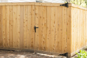 pine wooden fence